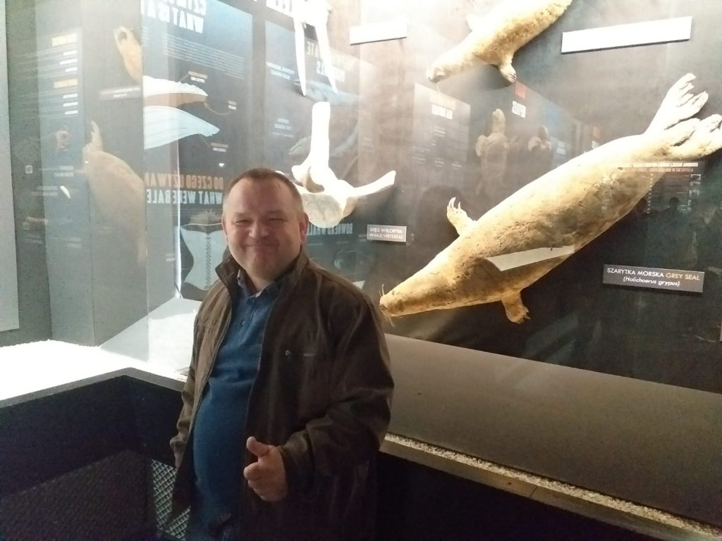 Uśmiechnięty  mieszkaniec z uniesionym kciukiem ku górze, w wystawa ssaka morskiego z rodziny fokowatych np. Szarytki Morskiej.