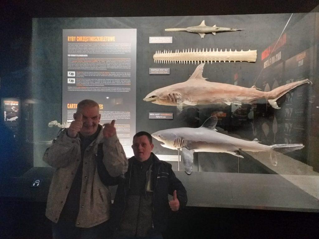 Dwóch zadowolonych podopiecznych domu z uniesionymi kciukami ku górze. W tle wystawa ryb chrzęstnoszkieletowych.