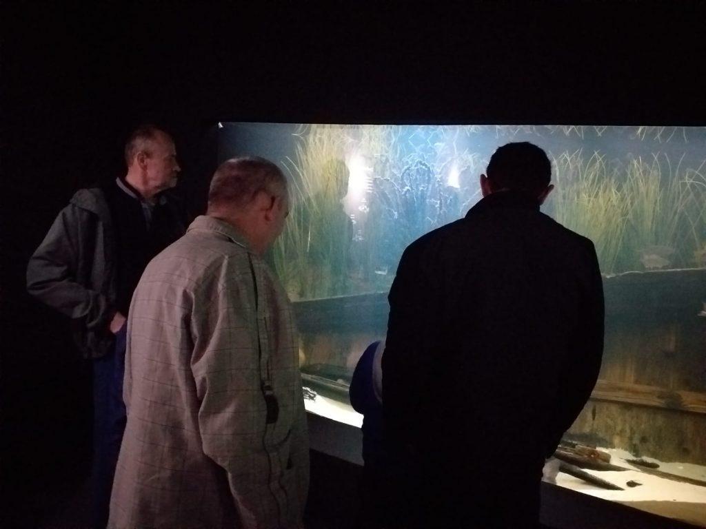 Trzech mieszkańców podziwiających ryby na dnie akwarium.