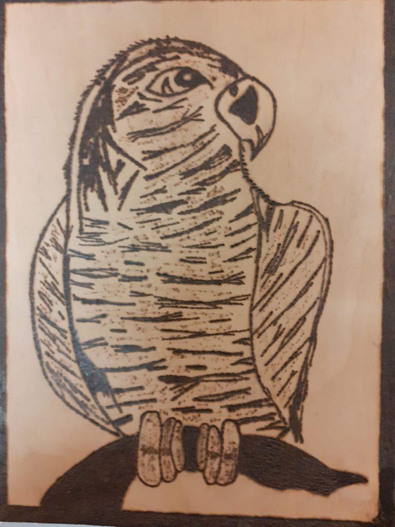 Drewniana wypalanka przedstawiająca papugę