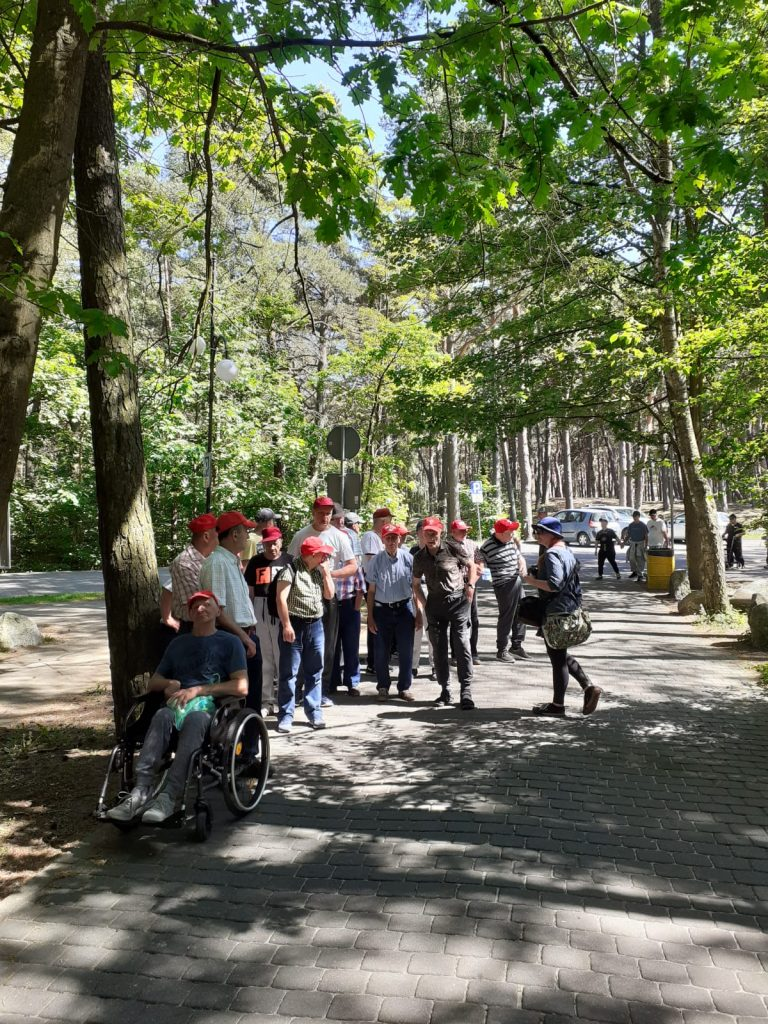 Mieszkańcy na spacerze w parku, między wysokimi drzewami