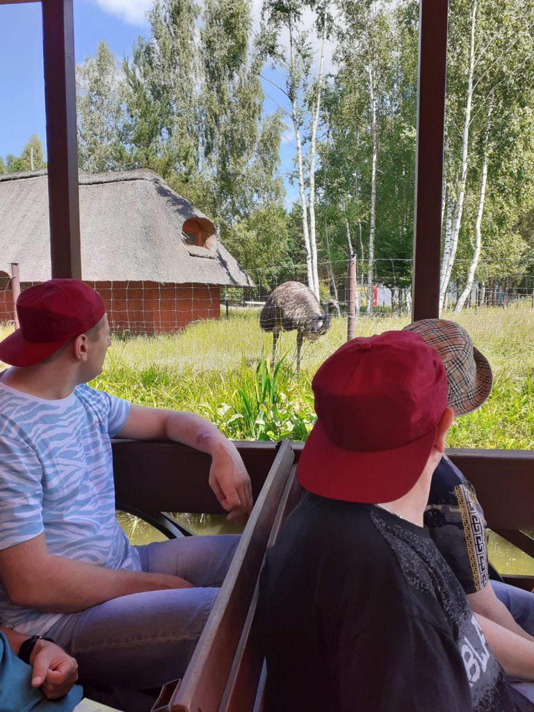Trzech mężczyzn w czapkach na głowie siedzi w tramwaju wodnym i z daleka obserwuje zwierzę