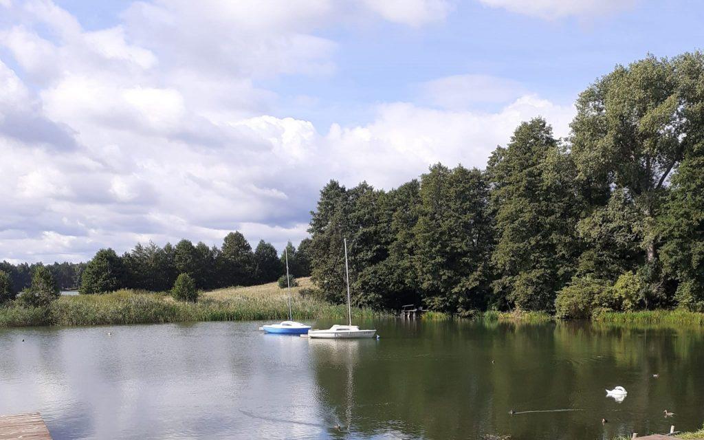 Jezioro, zielone drzewa oraz łąka w oddali. Na jeziorze dwie łódki