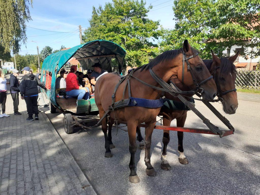 Dwa brązowe konie za nimi bryczka z grupą mieszkańców i opiekunów