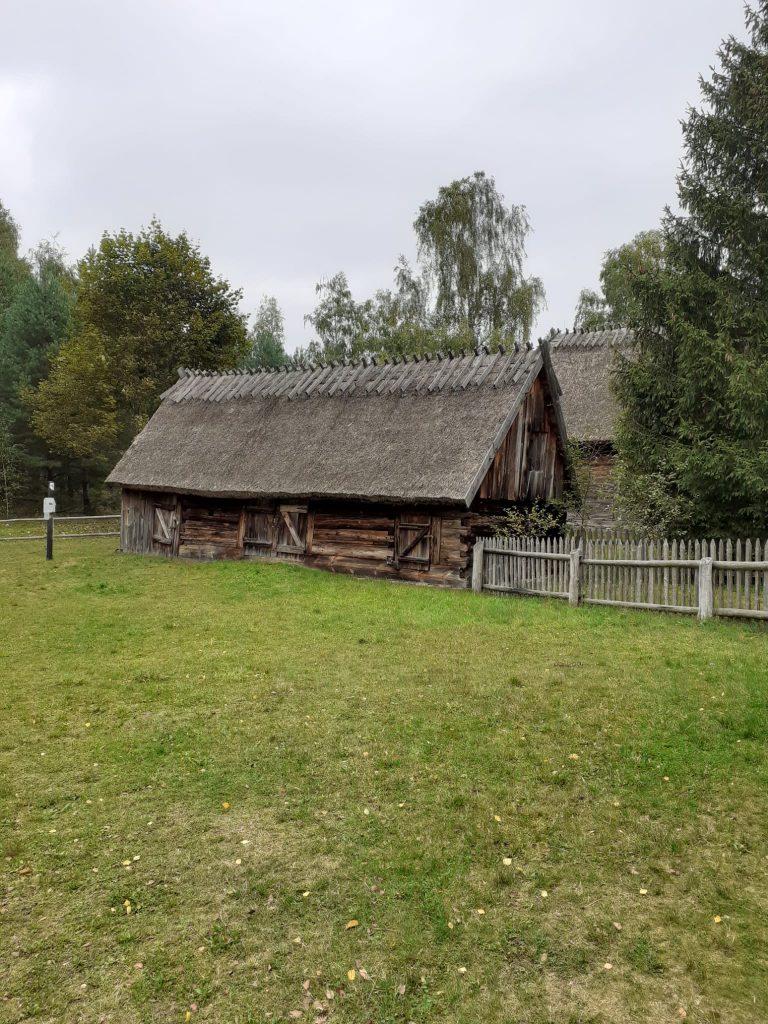 Zielona trawa i dwie stare drewniane chaty ze strzecha na dachu. Obok jednego domu płot wokół drzewa