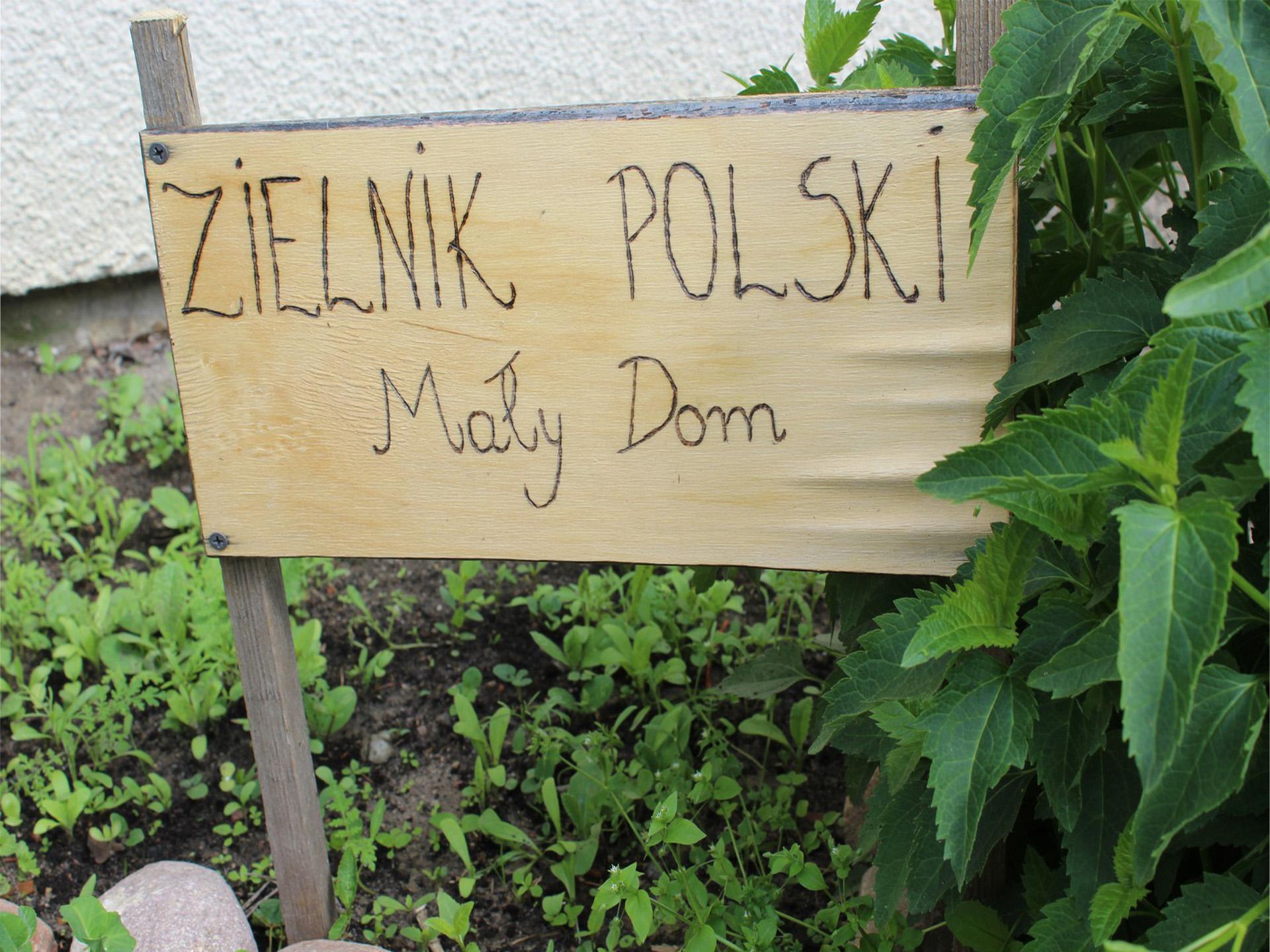 """Drewniana tablica z wypalonym napisem """"Zielnik Polski Mały Dom"""" z tyłu zielone zioła"""